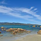 Wellington Beach by PeteJoey