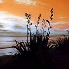 Flax Orange Dusk  by Karen Lewis