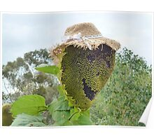The Happy Flowerdale Sunflower Poster