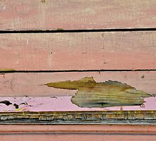 Peeling Paint Pelican Paddling in a Pretty Pink Pond. by Susana Weber