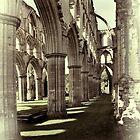 Rievaulx Abbey 4 by Ray Clarke