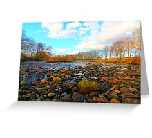 River Tees, Nr Low Coniscliffe, North England. March 2012 Greeting Card