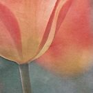 Joy of spring III by Maria Ismanah Schulze-Vorberg