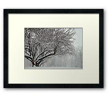 Winter's Wild Play Framed Print
