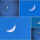 Collage of the last quarter of the Summer Moon. by alycanon