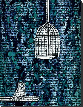 The Bird Cage by kerbear6156