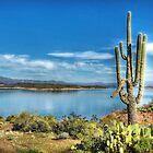 Roosevelt Lake  by Saija  Lehtonen