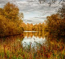 Peace by the Lake by Vicki Field