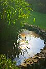 Equinox Sun in the Pond by CrismanArt
