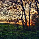 English Countryside Sunset HDR  by Vicki Field