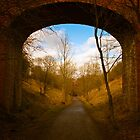 Old railway bridge by David Hall