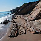 Gaviota Beach Looking North by Renee D. Miranda