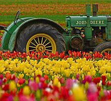 Nothing Runs Like A Deere by Nick Boren