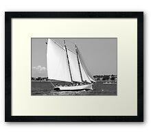 Sailing!  Black and White Framed Print