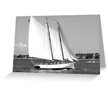 Sailing!  Black and White Greeting Card