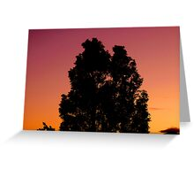 Blissful Tree As The Sun Sets Greeting Card
