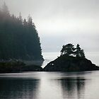 Along the Inside Passage by ZWC Photography