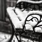 Bench in Snow by Vicki Field