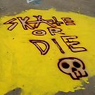 Skate or Die by Amanda Huggins