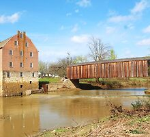 Bollinger Mill, located in Gape Girardeau County by SusieG