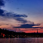 Budapest the Danube River at night.Number 4 by Anatoly Lerner