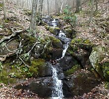 Small But Beautiful Flowing Waterfall - Off the Blue Ridge Parkway by ThruMyEyesAb
