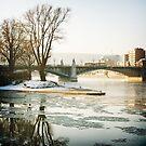 Bridge over frozen waters by Michel Raj
