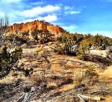 New Mexico Landscape by brookesmith