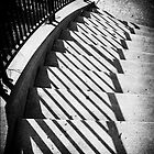 Curved stairway by woodnimages