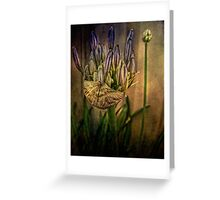 Springing Forth with Abundance Greeting Card
