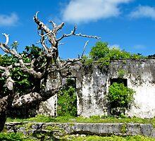 ruins at Rarotonga by Anne Scantlebury