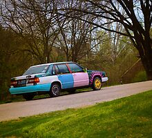 THE SMILEY FACE CAR by Pauline Evans