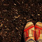 Shoes in the Mulch by kerbear6156