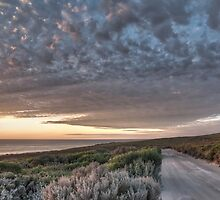 Serenity by Shari Mattox
