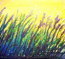 Button Grass by © Linda Callaghan