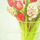 spring by Iris Lehnhardt