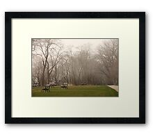Lake Park Foggy Landscape Framed Print