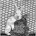 SHOEBOX GALLERY: Easter Bunny by MH Heintz