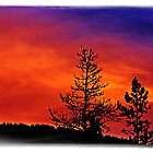 Burning Sunrise by Janie Lynn Johnson