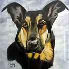 "Cindy - my ""souldog"" by Bine"