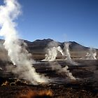 The Steaming Valley, Geysers El Tatio, Chile  by ScotLandscapes