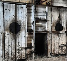 Where Have All The Shearers Gone - Junee NSW Australia by Bev Woodman
