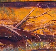 Railway line Kilmore East Vic Australia by Margaret Morgan (Watkins)