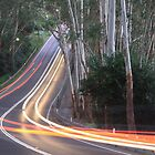 Light trails through the bush by Graham Lawrence