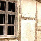 Old window by Diana  Kaiani