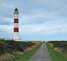 Tarbat Ness Light by WatscapePhoto