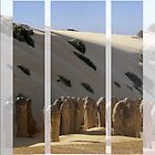 Pinnacles WA by bonhy