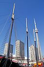 Masts and Towers - Toronto Ontario by Debbie Pinard