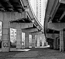 Under the Gardiner - Toronto Ontario by Debbie Pinard