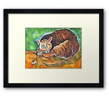 Tomcat and His Toy Framed Print